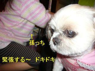mint_20070424_3