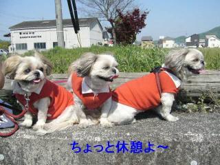 oyako_20070429_1