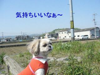 mint_20070429_2