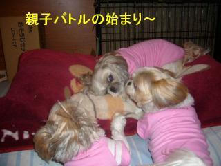 oyako_20070502_1