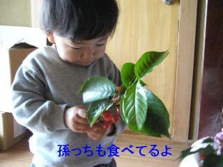 riku_20070512_11