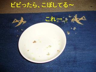 gohan_20070513_2