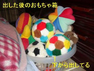 ball_20070520_2