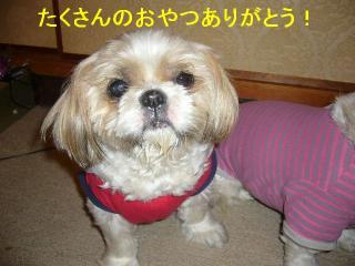 bibi_20070522_3