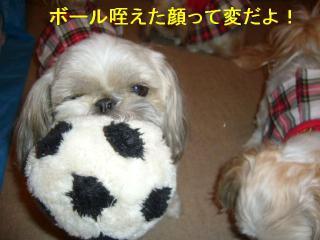 love_20070531_3