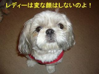 love_20070531_4