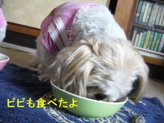 bibi_20070602_1