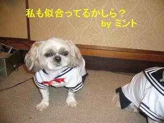 mint_20070612_1