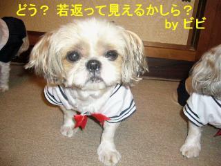 bibi_20070612_1