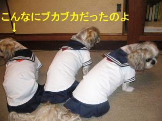 oyako_20070612_1
