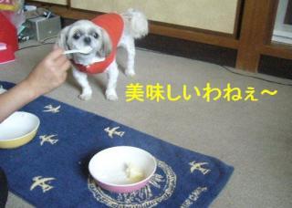 mint_20070610_4