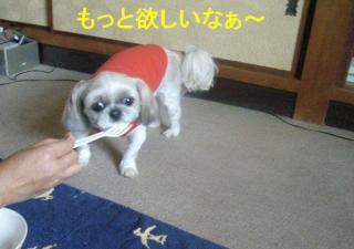 mint_20070610_5
