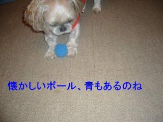 mint_20070612_3