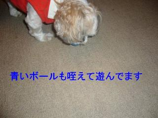 mint_20070612_5