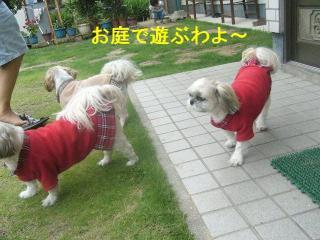 oyako_20070617_1