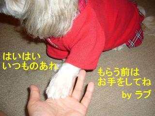 love_20070620_2