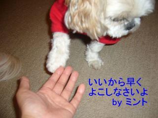 mint_20070620_2
