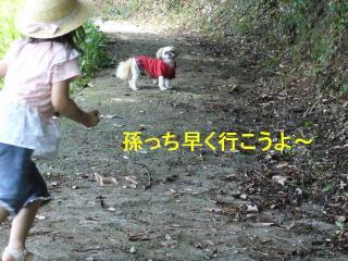mint_20070623_6