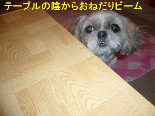 mint_20070625_1