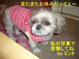 mint_20070626_1