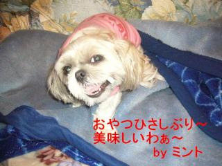 mint_20070627_4
