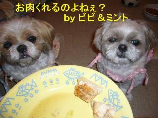 bibimint_20070703_1