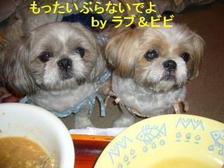 lovebibi_20070703_2