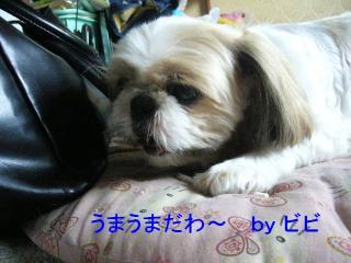 bibi_20070707_1