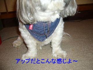 love_20070708_2