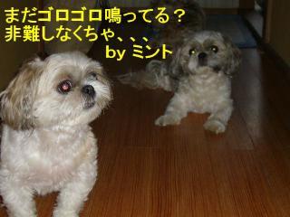 mint_20070715_2