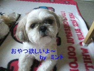 mint_20070723_1