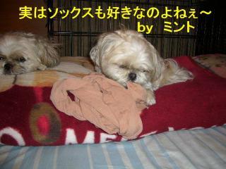 mint_20070726_2