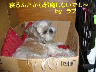 love_20070730_2