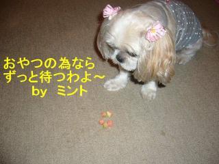 mint_20070805_13