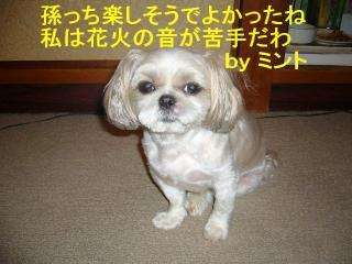 mint_20070814_11
