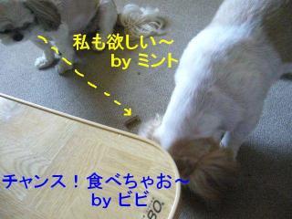 bibi_20070814_3