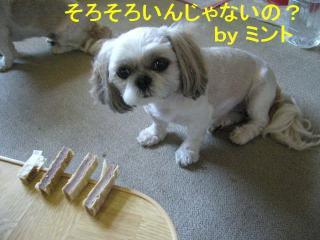 mint_20070814_4