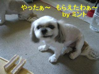 mint_20070814_5