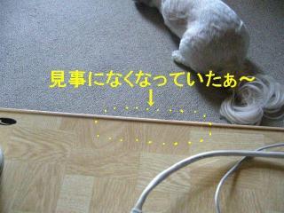 oyatu_20070816_2