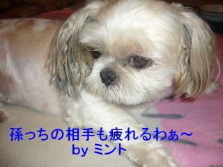mint_20070821_6