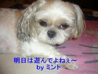 mint_20070818_2