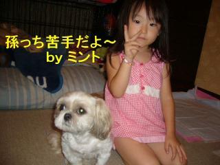 mint_20070821_3