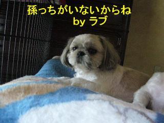 love_20070826_1