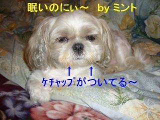 mint_20070828_1