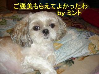 mint_20070831_3
