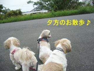 oyako_20070901_1