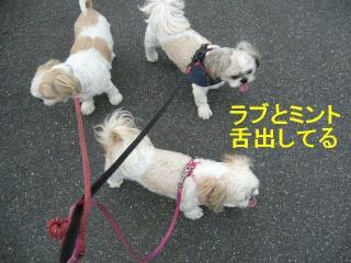 oyako20070901_2