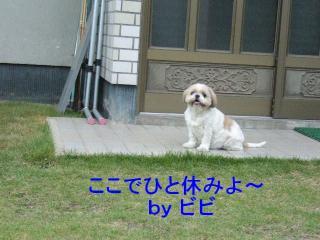 bibi_20070901_1