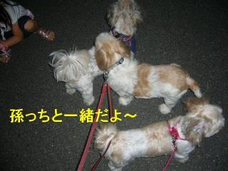 oyako__20070905_2