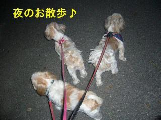 oyako_20070905_1